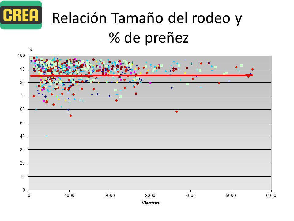 Relación Tamaño del rodeo y % de preñez