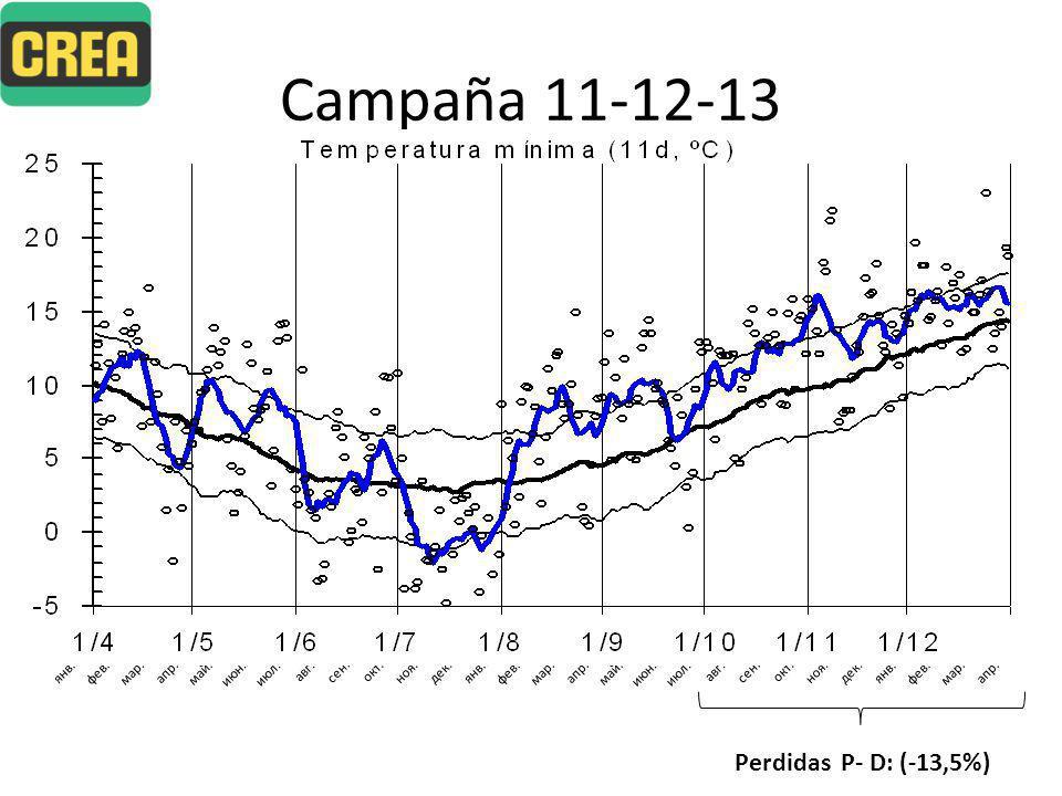 Campaña 11-12-13 PariciónDesteteServicio 89,5% de Preñez81,1% de Parición79,2% de Dtt Perdidas P- D: (-13,5%)