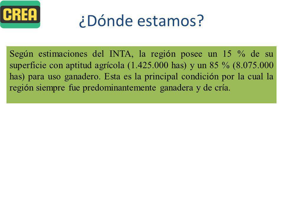% Pérdidas Preñez-Destete 9,74%