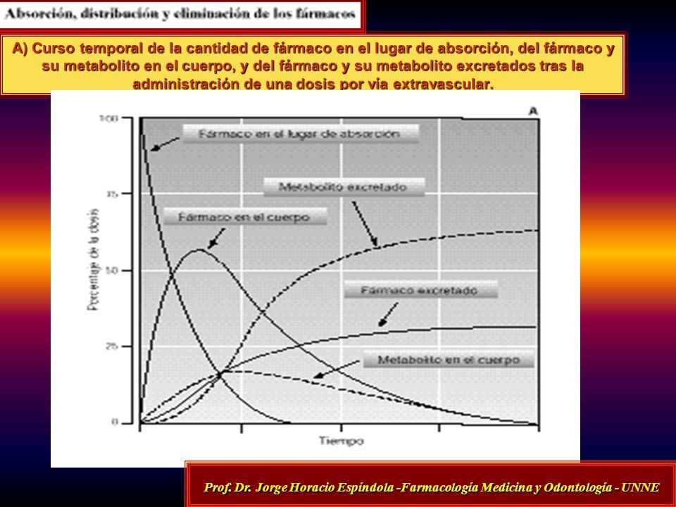 A) Curso temporal de la cantidad de fármaco en el lugar de absorción, del fármaco y su metabolito en el cuerpo, y del fármaco y su metabolito excretad