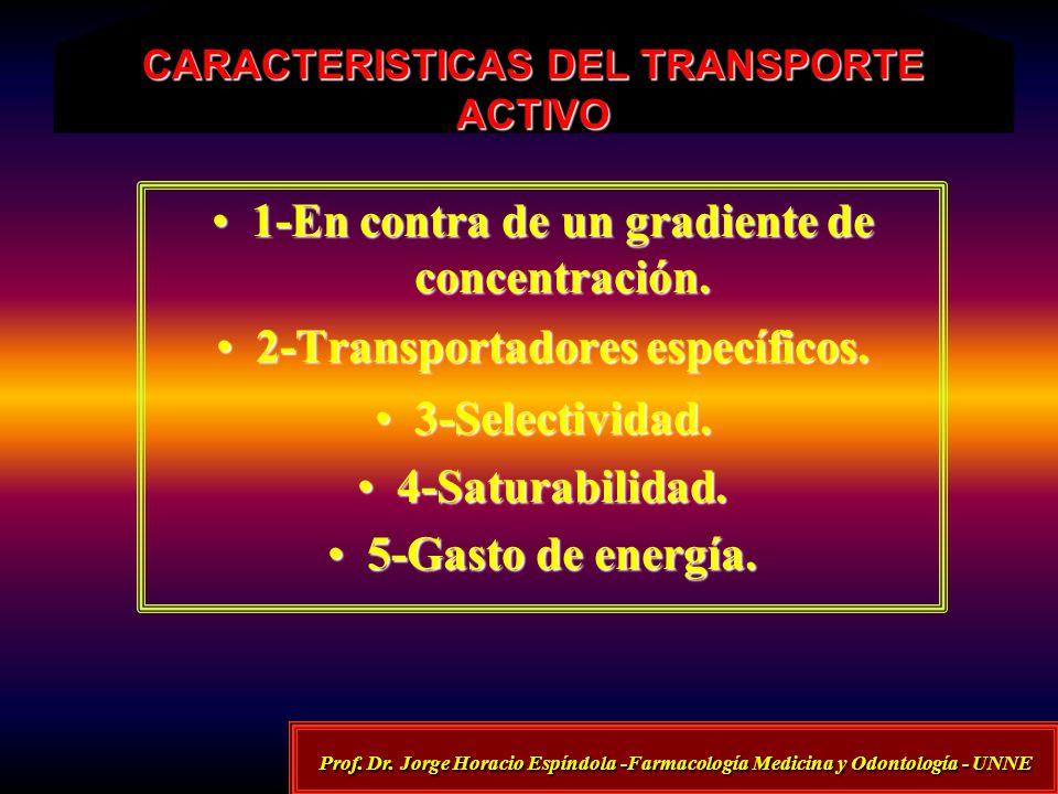 CARACTERISTICAS DEL TRANSPORTE ACTIVO 1-En contra de un gradiente de concentración.1-En contra de un gradiente de concentración. 2-Transportadores esp