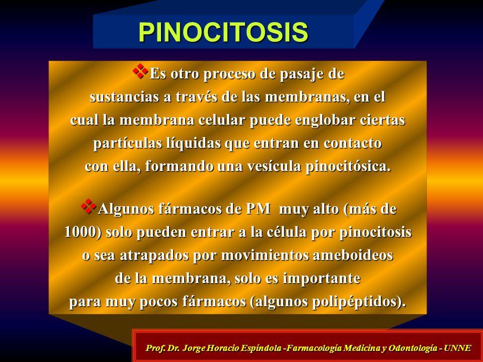 PINOCITOSIS Es otro proceso de pasaje de Es otro proceso de pasaje de sustancias a través de las membranas, en el cual la membrana celular puede englo