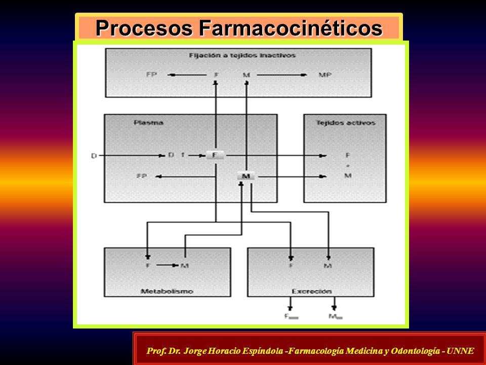 Procesos Farmacocinéticos Prof. Dr. Jorge Horacio Espíndola -Farmacología Medicina y Odontología - UNNE