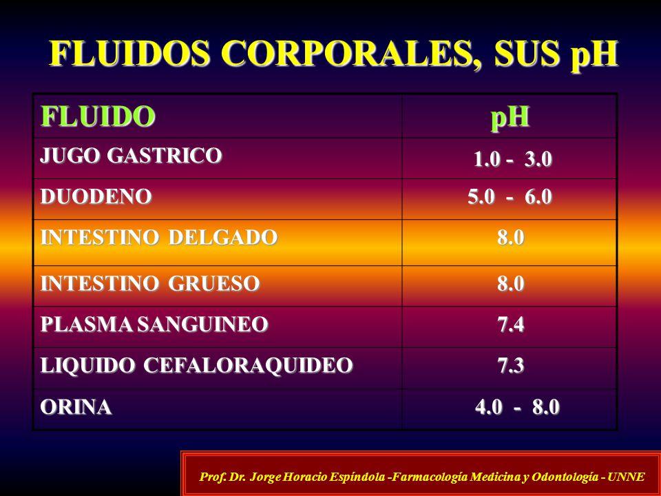 FLUIDOS CORPORALES, SUS pH FLUIDOpH JUGO GASTRICO 1.0 - 3.0 1.0 - 3.0 DUODENO 5.0 - 6.0 INTESTINO DELGADO 8.0 8.0 INTESTINO GRUESO 8.0 8.0 PLASMA SANG