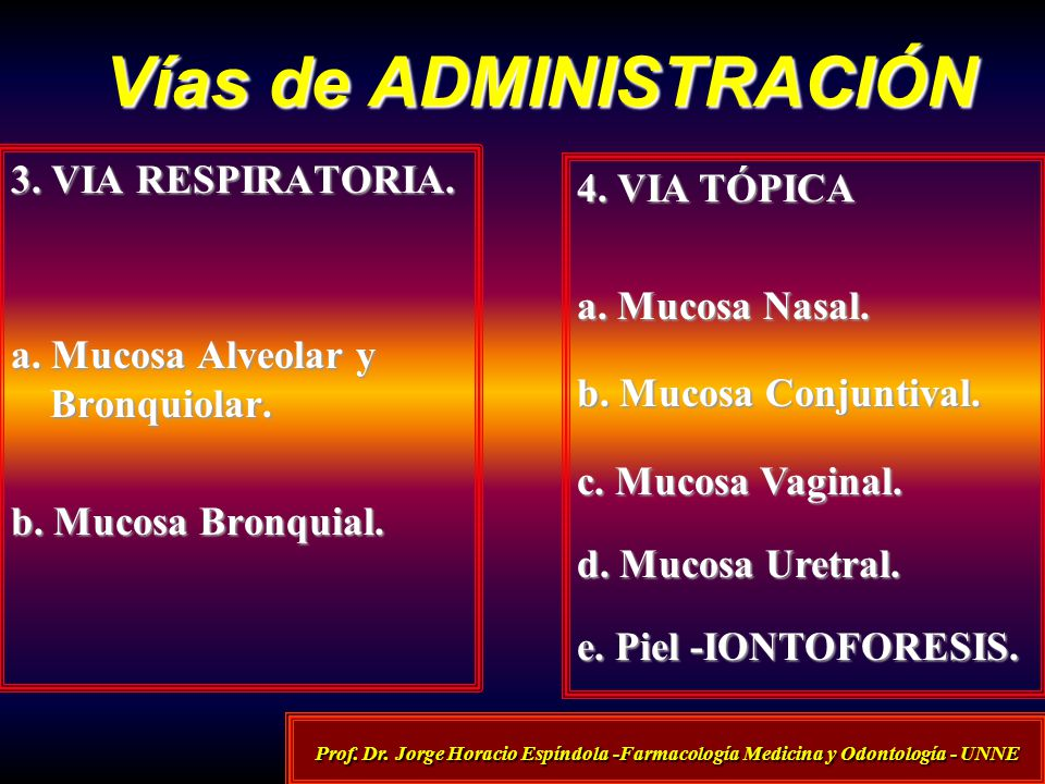 Vías de ADMINISTRACIÓN Prof. Dr. Jorge Horacio Espíndola -Farmacología Medicina y Odontología - UNNE 3. VIA RESPIRATORIA. a. Mucosa Alveolar y Bronqui
