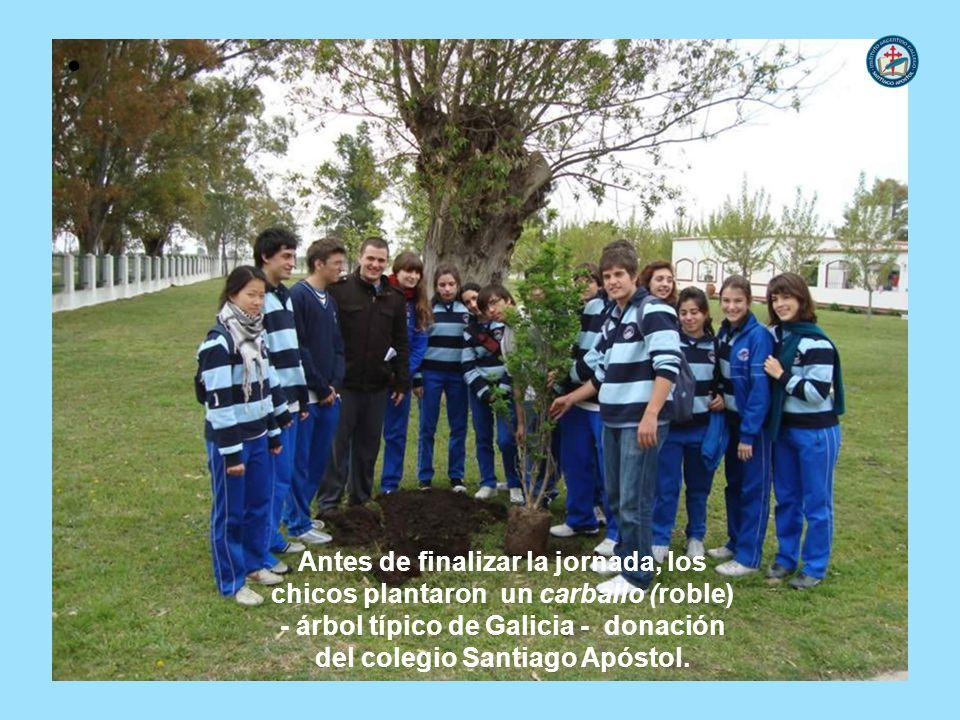 Antes de finalizar la jornada, los chicos plantaron un carballo (roble) - árbol típico de Galicia - donación del colegio Santiago Apóstol.