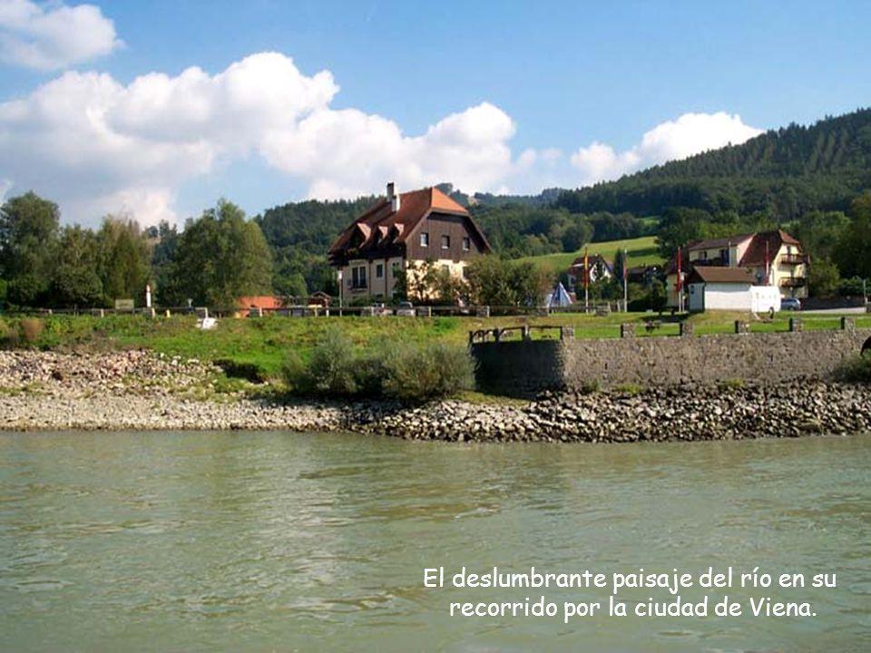 Viena del esplendor del río Danubio Azul, que nace en Alemania,recorre 850 Km pasando por siete países y desemboca en el mar Negro.