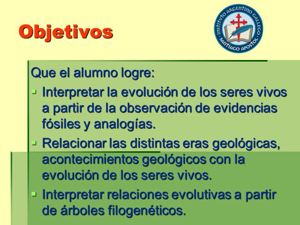 Objetivos Que el alumno logre: Interpretar la evolución de los seres vivos a partir de la observación de evidencias fósiles y analogías. Interpretar l