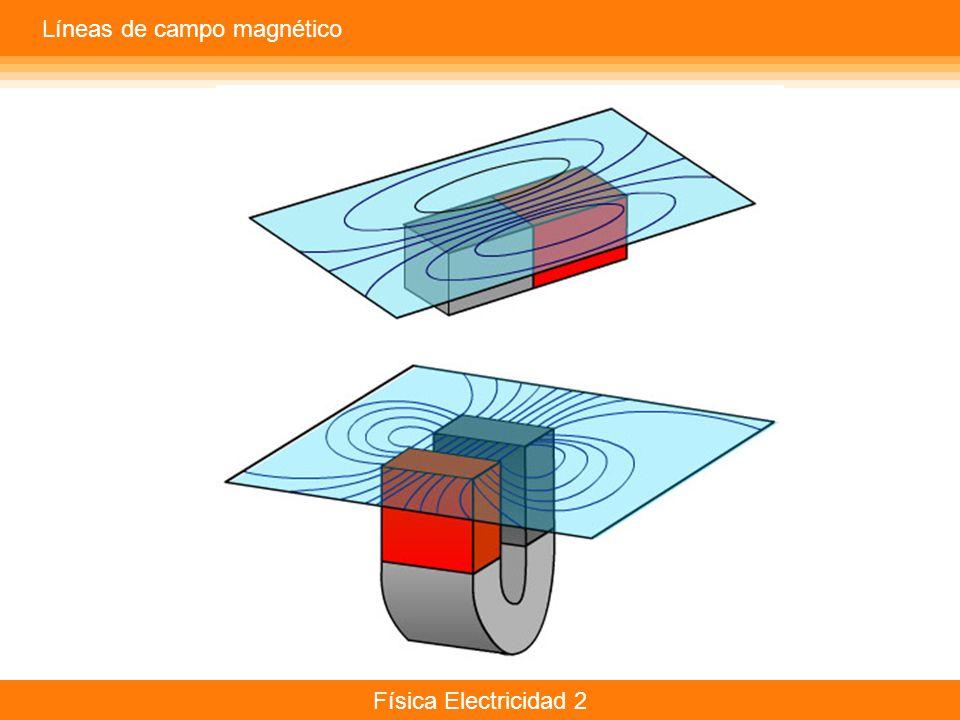 Física Electricidad 2 Líneas de campo magnético
