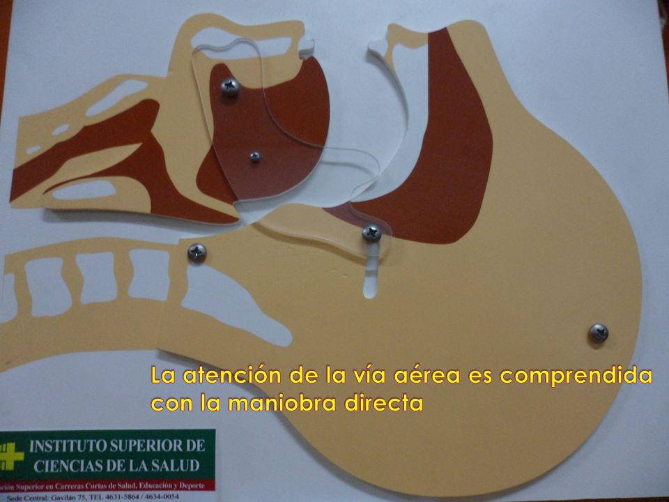 Las habilidades y destrezas para una Intubación Orotraqueal deben ser adquiridas en simuladores.