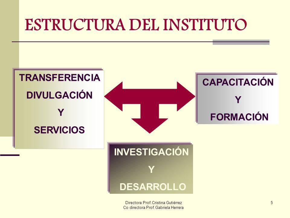 Directora Prof.Cristina Gutiérrez Co directora Prof.Gabriela Herrera 5 ESTRUCTURA DEL INSTITUTO TRANSFERENCIA DIVULGACIÓN Y SERVICIOS CAPACITACIÓN Y F