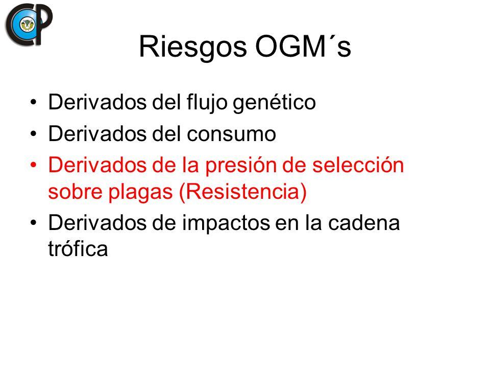 Derivados del flujo genético Derivados del consumo Derivados de la presión de selección sobre plagas (Resistencia) Derivados de impactos en la cadena