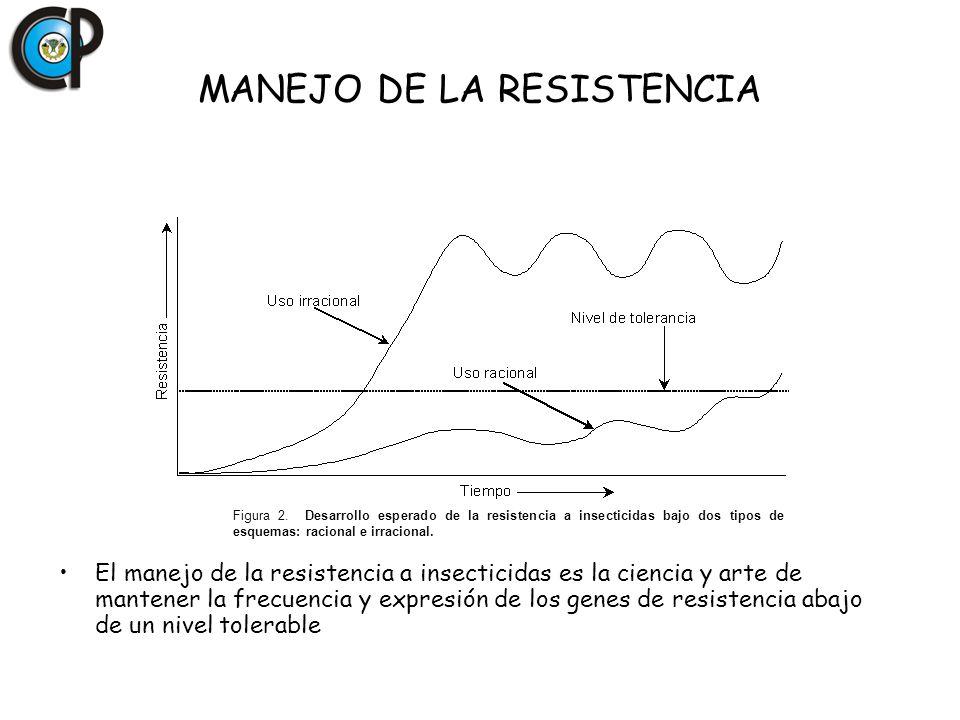 Resistencia a insecticidas SS RS RR Generalmente los individuos RR tienen menos capacidad biótica que los SS El uso sostenido de la presión de selección favorecerá a los RR con capacidad biótica similar a los SS Resistencia estable