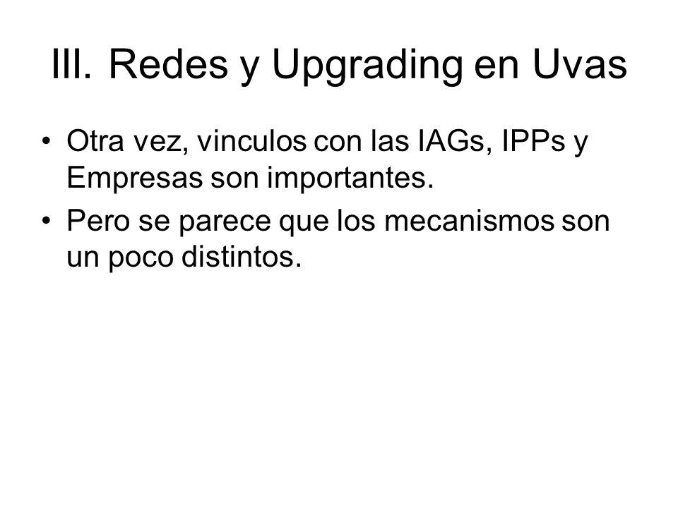 III. Redes y Upgrading en Uvas Otra vez, vinculos con las IAGs, IPPs y Empresas son importantes.