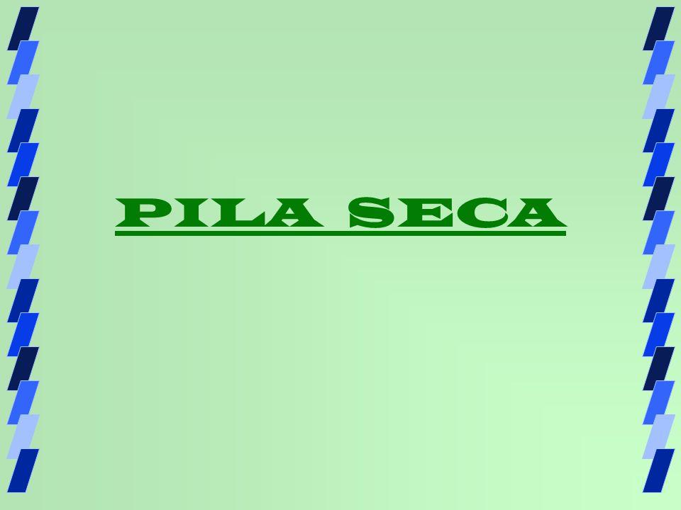 PILA SECA