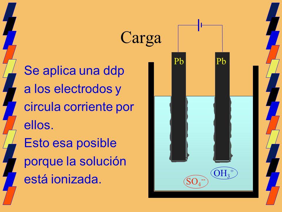 Carga Se aplica una ddp a los electrodos y circula corriente por ellos. Esto esa posible porque la solución está ionizada. Pb SO 4 -- OH 3 +