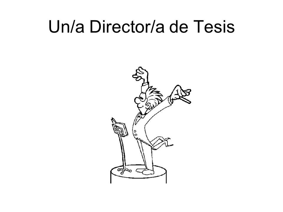 Un/a Director/a de Tesis