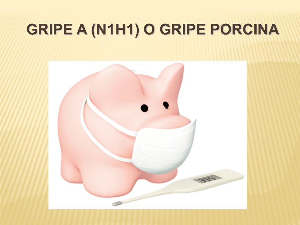 GRIPE A (N1H1) O GRIPE PORCINA