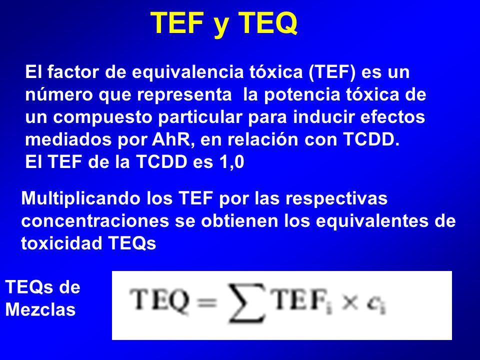 TEF y TEQ Multiplicando los TEF por las respectivas concentraciones se obtienen los equivalentes de toxicidad TEQs TEQs de Mezclas El factor de equivalencia tóxica (TEF) es un número que representa la potencia tóxica de un compuesto particular para inducir efectos mediados por AhR, en relación con TCDD.