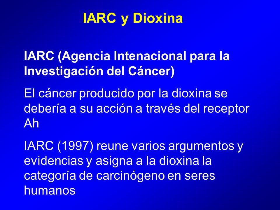 IARC y Dioxina IARC (Agencia Intenacional para la Investigación del Cáncer) El cáncer producido por la dioxina se debería a su acción a través del receptor Ah IARC (1997) reune varios argumentos y evidencias y asigna a la dioxina la categoría de carcinógeno en seres humanos