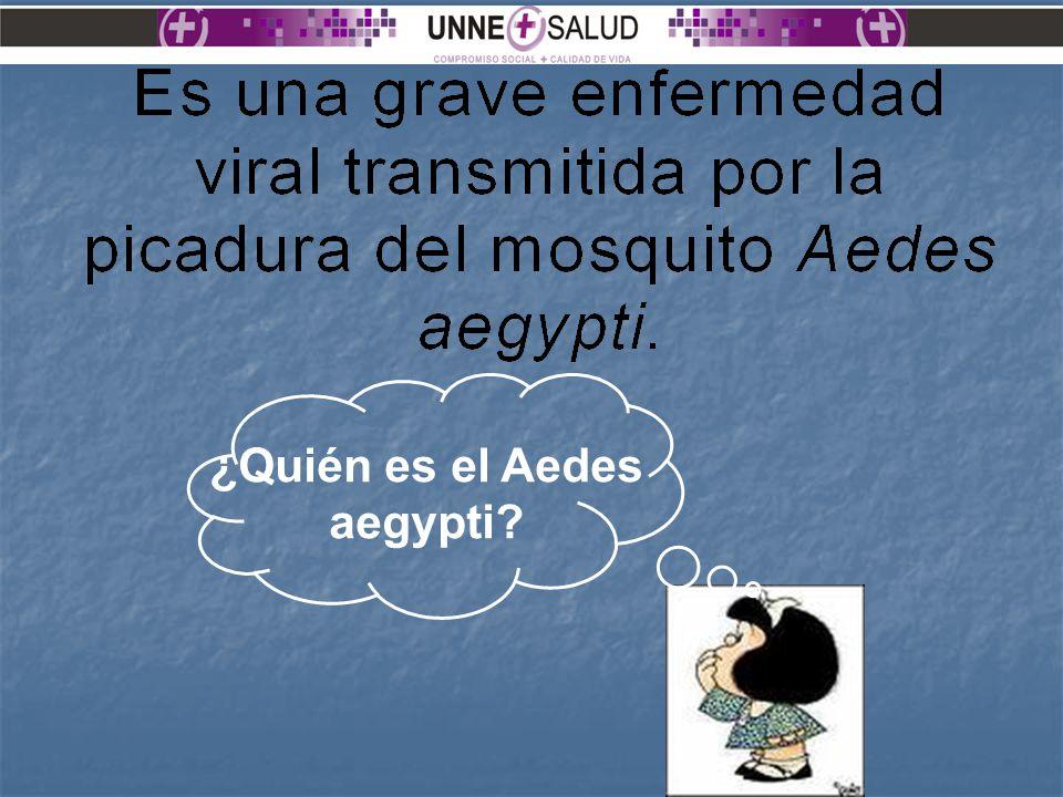 Los más expuestos a la picadura del mosquito son los niños, los turistas y los viajeros.