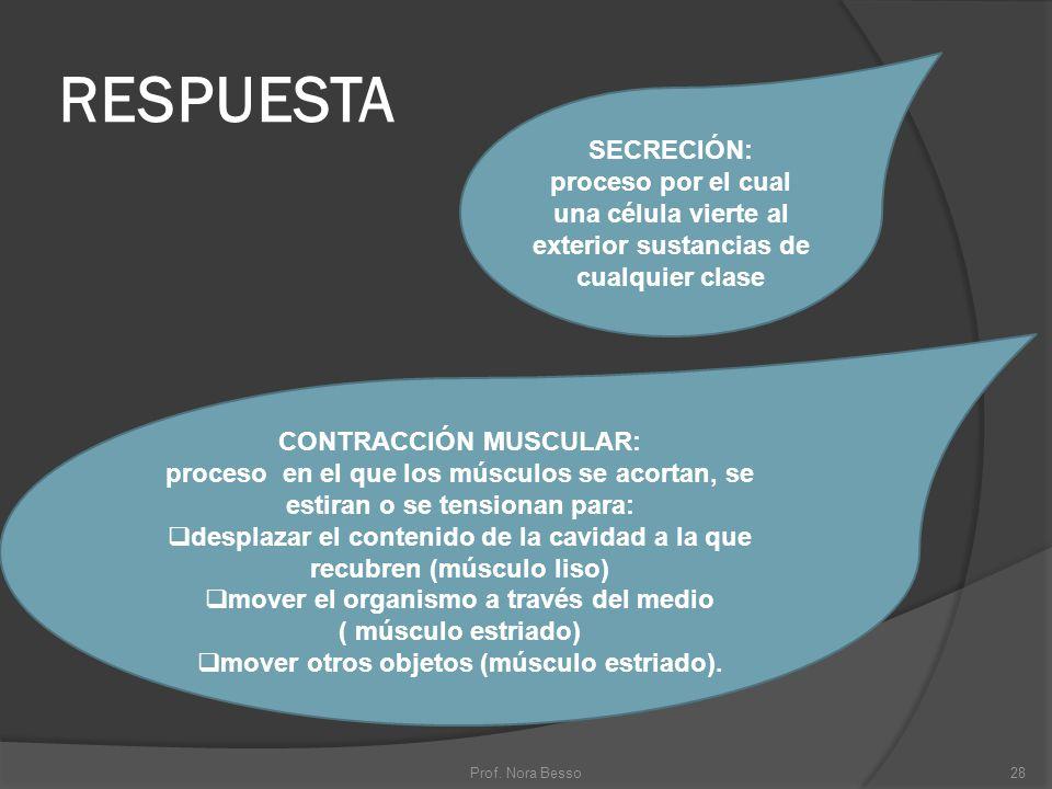 RESPUESTA 28Prof. Nora Besso SECRECIÓN: proceso por el cual una célula vierte al exterior sustancias de cualquier clase CONTRACCIÓN MUSCULAR: proceso