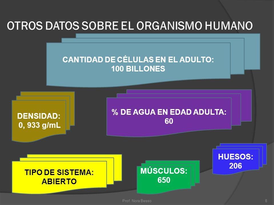 OTROS DATOS SOBRE EL ORGANISMO HUMANO DENSIDAD: 0, 933 g/mL CANTIDAD DE CÉLULAS EN EL ADULTO: 100 BILLONES % DE AGUA EN EDAD ADULTA: 60 TIPO DE SISTEM