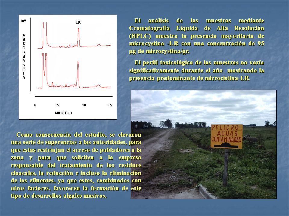 octubre mayo octubre mayo octubre mayo octubre mayo octubre mayo octubre mayo El análisis de las muestras mediante Cromatografía Líquida de Alta Resol