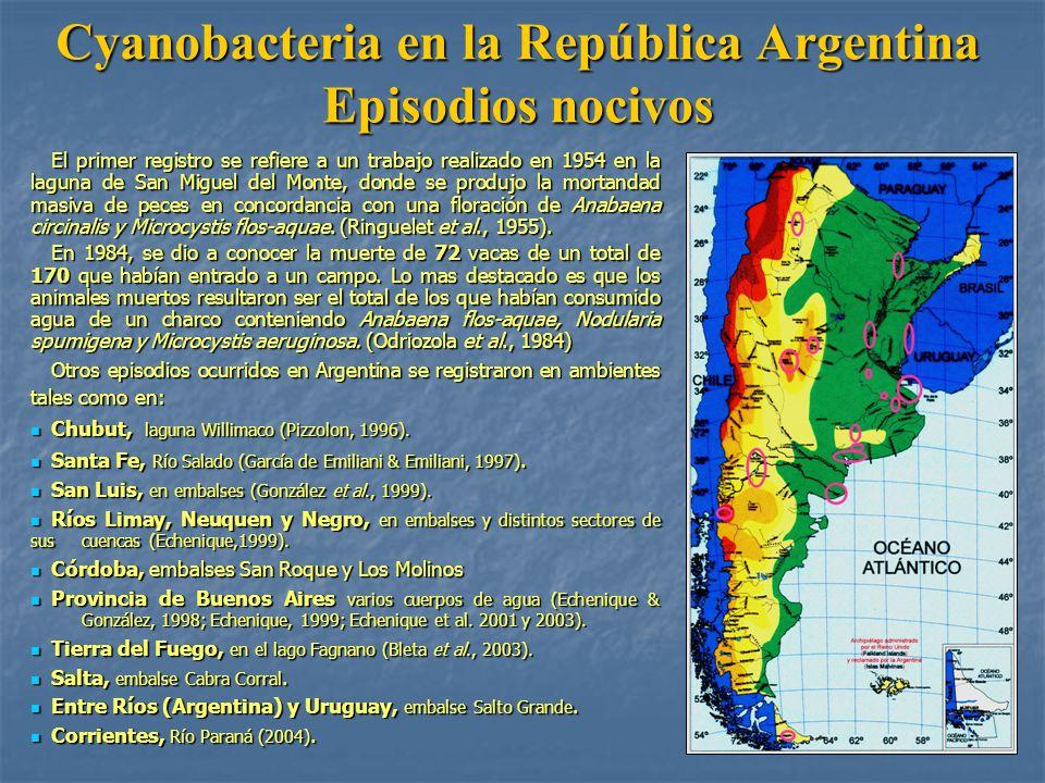 Cyanobacteria en la República Argentina Episodios nocivos El primer registro se refiere a un trabajo realizado en 1954 en la laguna de San Miguel del