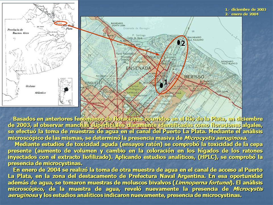 2 1 1.- diciembre de 2003 2.- enero de 2004 Basados en anteriores fenómenos de floraciones ocurridos en el Río de la Plata, en diciembre de 2003, al o