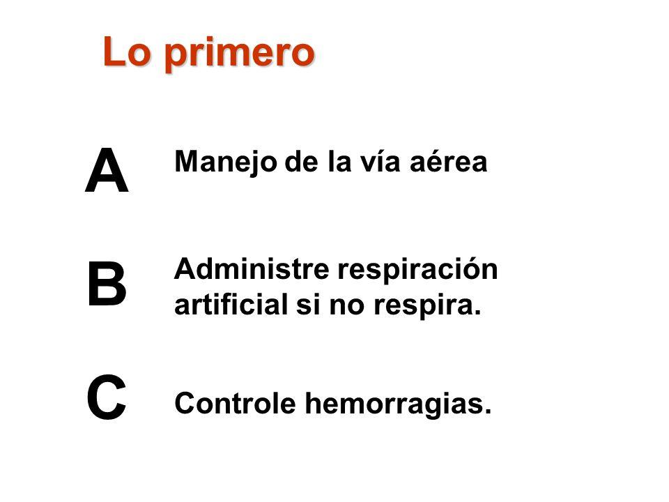 Manejo de la vía aérea Administre respiración artificial si no respira. Controle hemorragias. ABCABC Lo primero