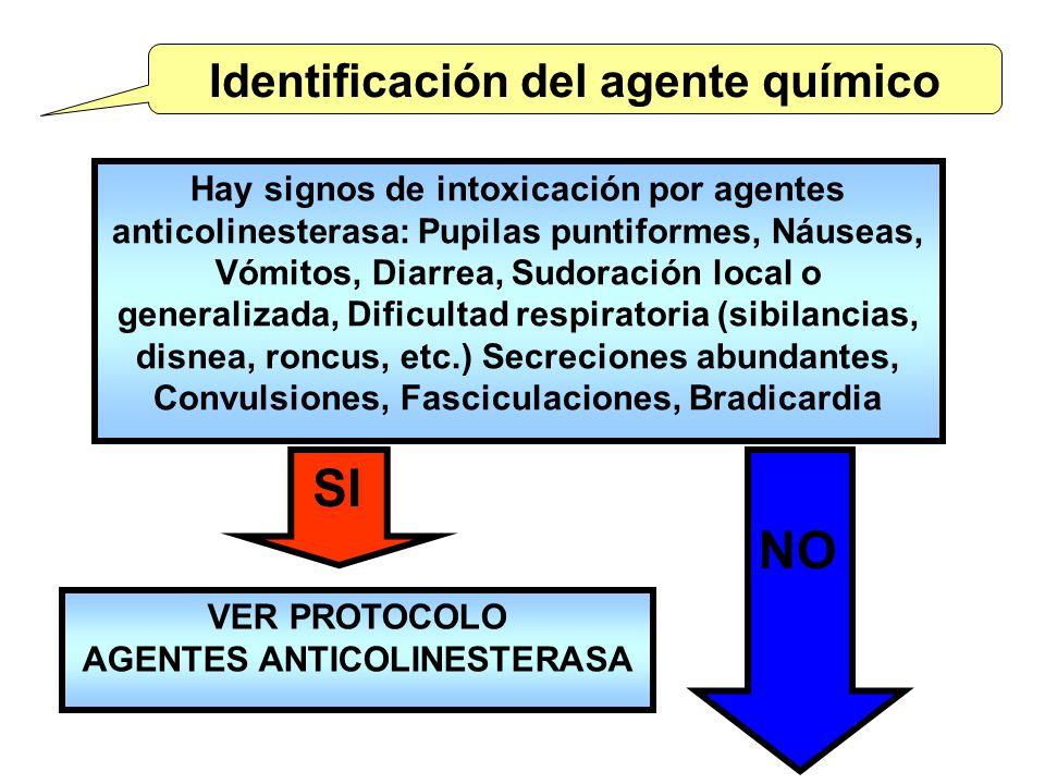 Identificación del agente químico Hay signos de intoxicación por agentes anticolinesterasa: Pupilas puntiformes, Náuseas, Vómitos, Diarrea, Sudoración