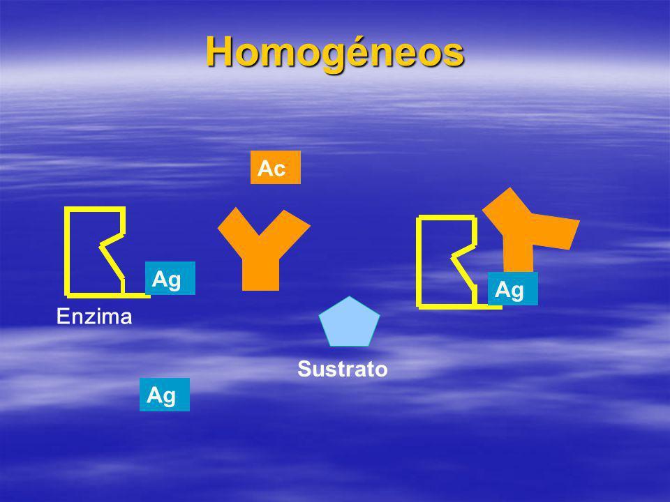 Homogéneos Ag Sustrato Enzima Ac Ag