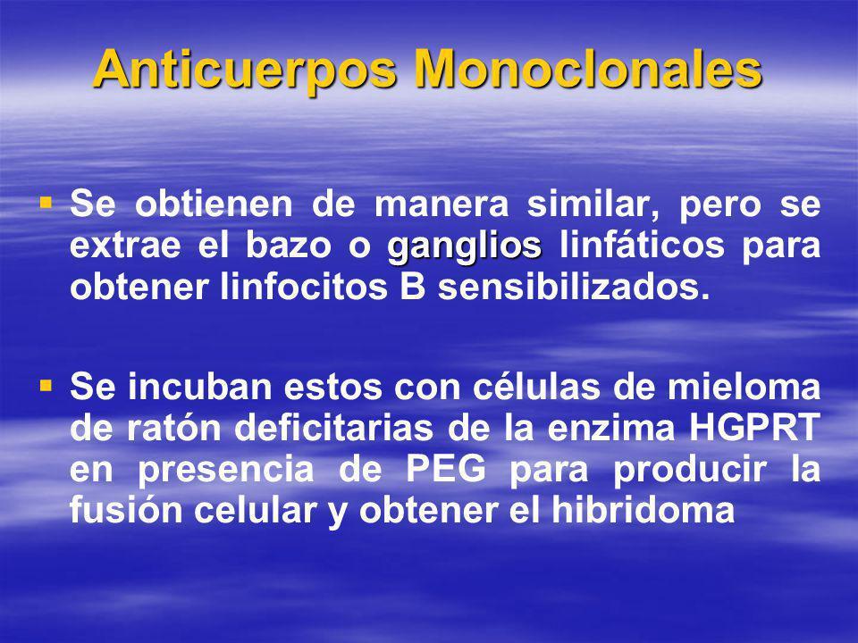 Anticuerpos Monoclonales ganglios Se obtienen de manera similar, pero se extrae el bazo o ganglios linfáticos para obtener linfocitos B sensibilizados.