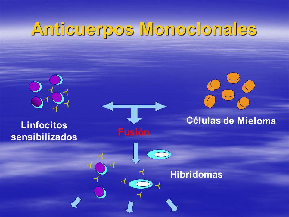 Anticuerpos Monoclonales Linfocitos sensibilizados Células de Mieloma Hibridomas Fusión