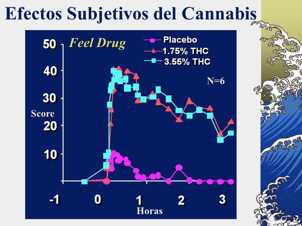 Efectos Subjetivos del Cannabis Score Horas N=6 Feel Drug