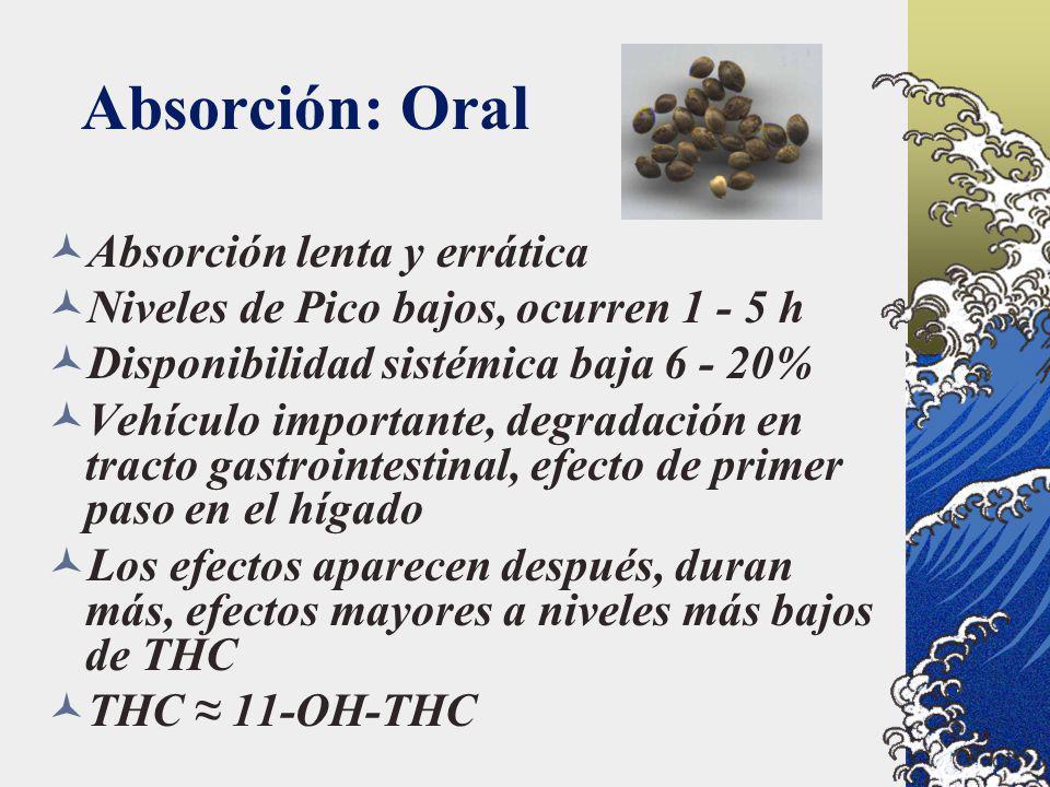 Absorción: Oral Absorción lenta y errática Niveles de Pico bajos, ocurren 1 - 5 h Disponibilidad sistémica baja 6 - 20% Vehículo importante, degradaci