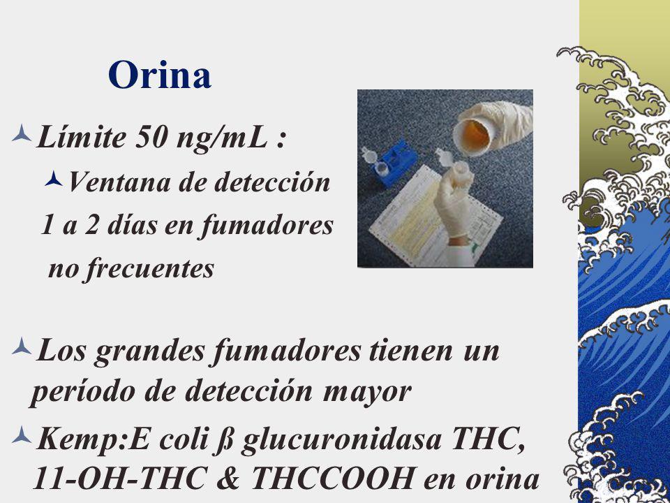 Orina Límite 50 ng/mL : Ventana de detección 1 a 2 días en fumadores no frecuentes Los grandes fumadores tienen un período de detección mayor Kemp:E c