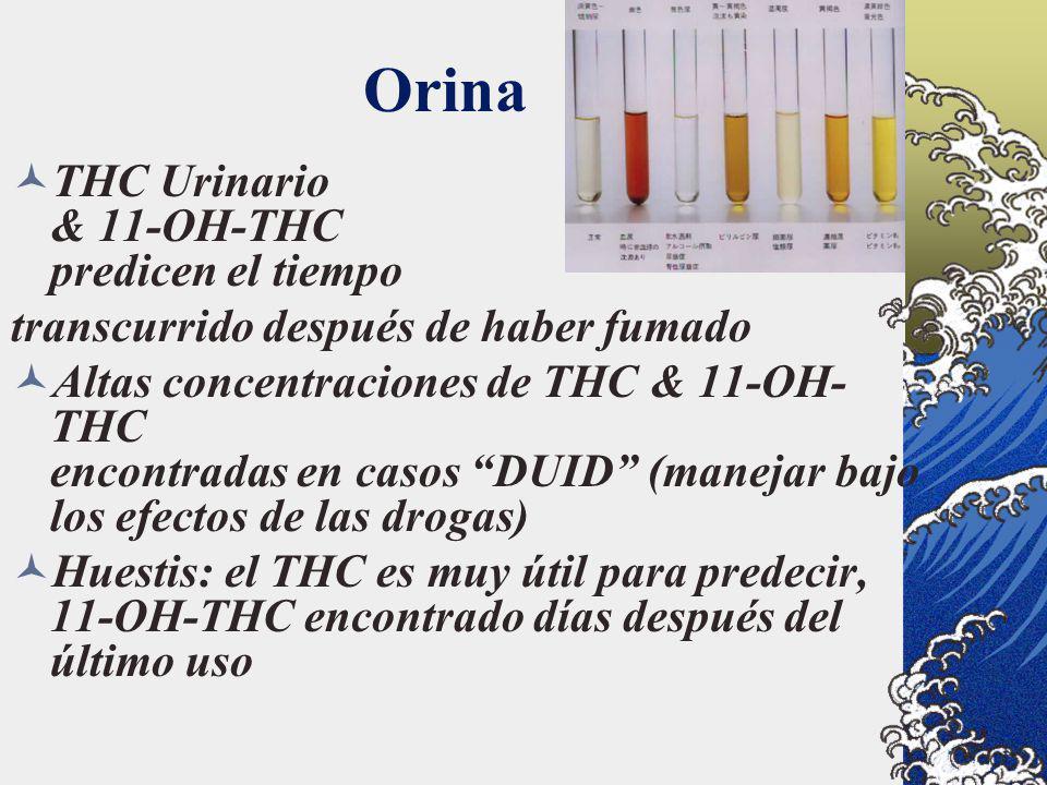Orina THC Urinario & 11-OH-THC predicen el tiempo transcurrido después de haber fumado Altas concentraciones de THC & 11-OH- THC encontradas en casos