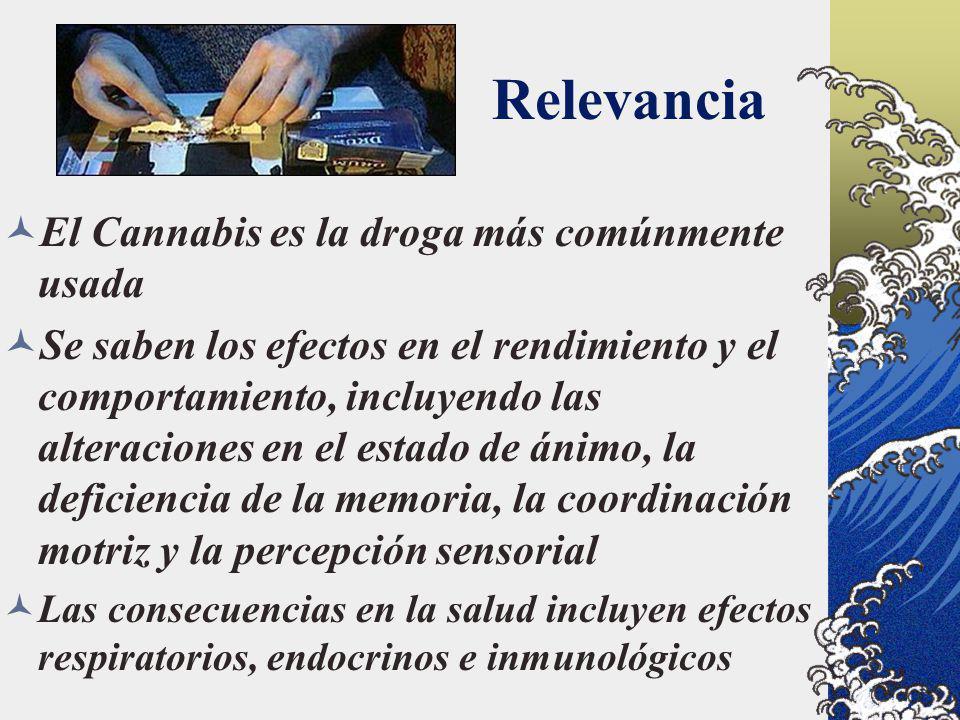 Relevancia El Cannabis es la droga más comúnmente usada Se saben los efectos en el rendimiento y el comportamiento, incluyendo las alteraciones en el