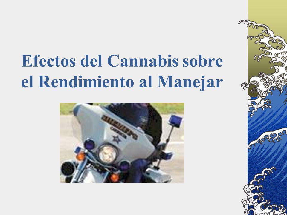 Efectos del Cannabis sobre el Rendimiento al Manejar