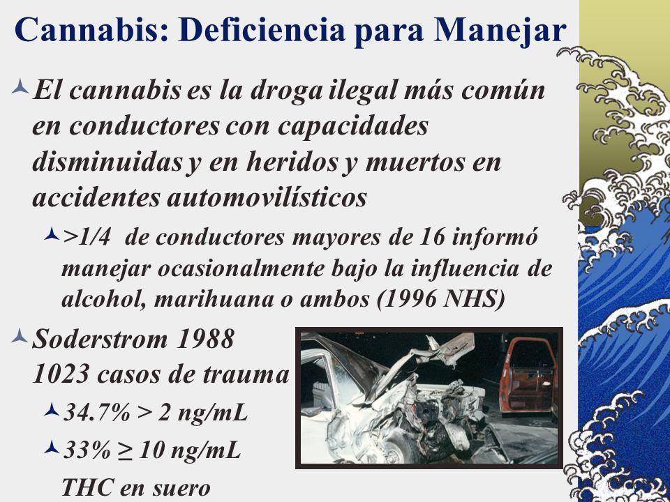 Cannabis: Deficiencia para Manejar El cannabis es la droga ilegal más común en conductores con capacidades disminuidas y en heridos y muertos en accid