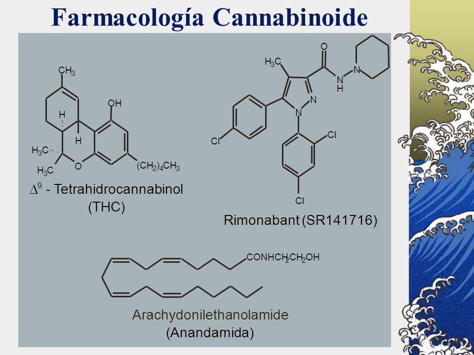 Farmacología Cannabinoide CONHCH 2 CH 2 OH (CH 2 ) 4 CH 3 H 3 C H 3 C H H OH CH 3 O 9 - Tetrahidrocannabinol (THC) N N N H N O H 3 C Cl Rimonabant (SR
