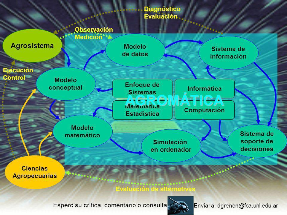 Agrosistema Enfoque de Sistemas Matemática Estadística Informática Computación Modelo conceptual Modelo matemático Simulación en ordenador Modelo de d
