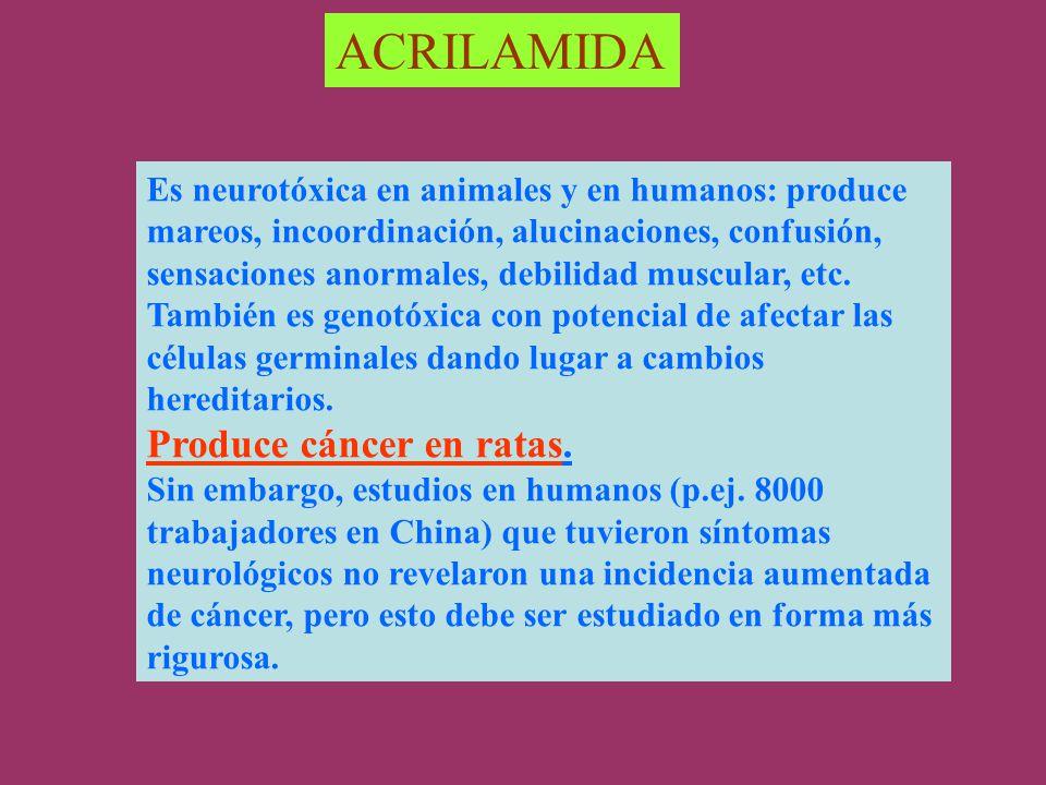ACRILAMIDA Es neurotóxica en animales y en humanos: produce mareos, incoordinación, alucinaciones, confusión, sensaciones anormales, debilidad muscular, etc.