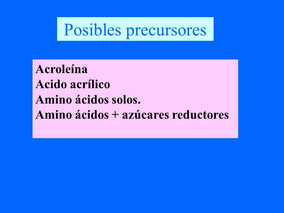 cc H c O H H H cc NH 2 c O H H H cc OH c O H H H (O) (+NH 3 ) Acroleína Acrilamida Acido acrílico H2NH2N ONH 2 O Asparagina R.R.