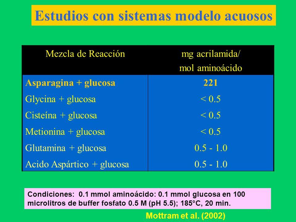 Estudios con sistema modelo en base a almidón de papa + cocción Formación de Acrilamida Almidón de papa<50 ppb Almidón de papa + glucosa<50 ppb Almidón de papa + asparagina 117 ppb Almidón + glucosa + asparagina 9270 ppb Alanina<50 ppb Arginina<50 ppb Aspártico <50 ppb Cisteína<50 ppb Treonina <50 ppb Valina<50 ppb Glutamina 156 ppb