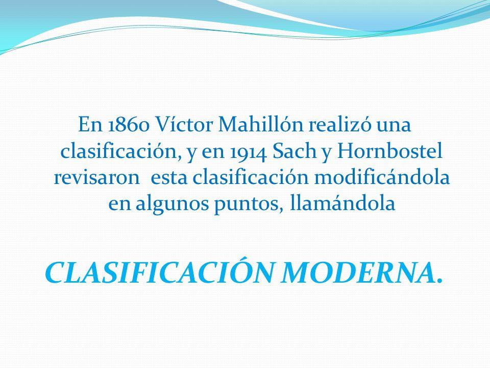 En 1860 Víctor Mahillón realizó una clasificación, y en 1914 Sach y Hornbostel revisaron esta clasificación modificándola en algunos puntos, llamándola CLASIFICACIÓN MODERNA.