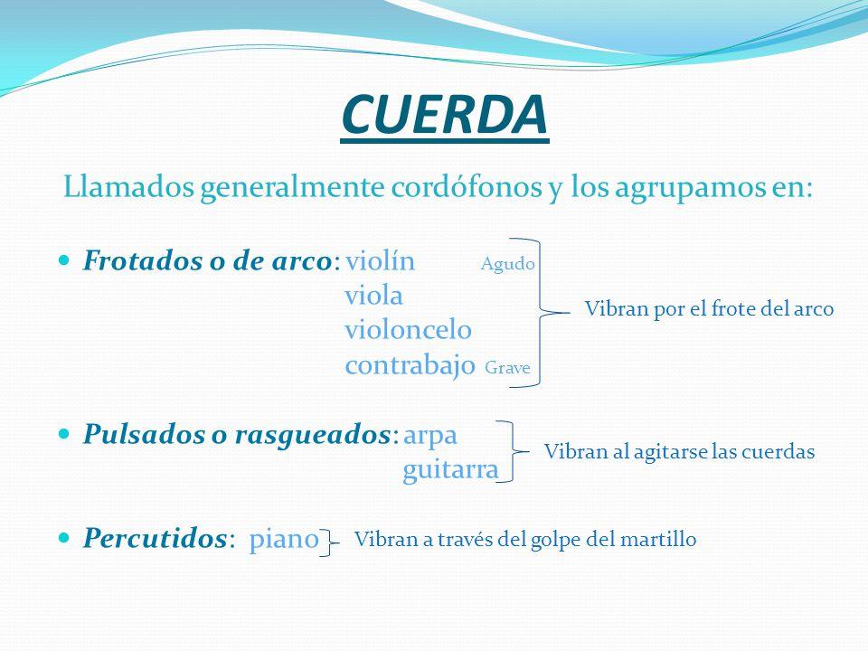 OTRA CLASIFICACIÓN DE LOS INSTRUMENTOS DE PERCUSIÓN Producen sonido al ser golpeados, entrechocados, sacudidos o raspados.