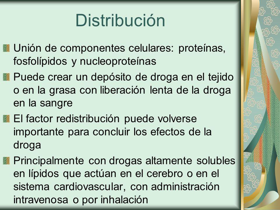 Distribución Unión de componentes celulares: proteínas, fosfolípidos y nucleoproteínas Puede crear un depósito de droga en el tejido o en la grasa con liberación lenta de la droga en la sangre El factor redistribución puede volverse importante para concluir los efectos de la droga Principalmente con drogas altamente solubles en lípidos que actúan en el cerebro o en el sistema cardiovascular, con administración intravenosa o por inhalación